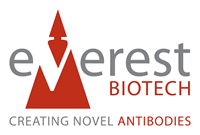 Everest Biotech Ltd.