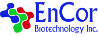 EnCor Biotechnology