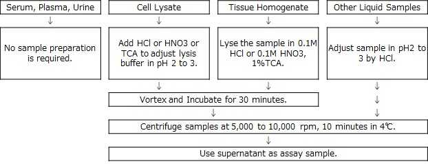 Sample preparation of Nitroso-PSAP method Iron Assay kit LS