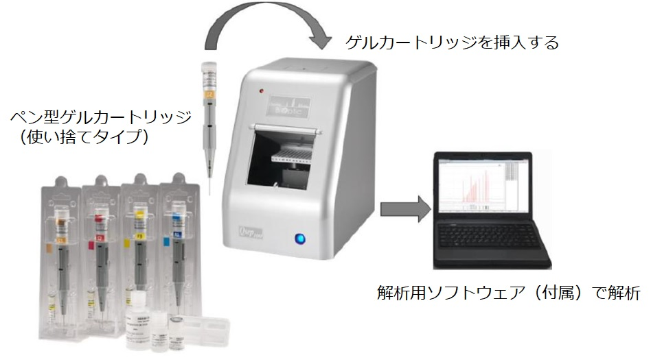 Qsep 100 DNA Fragment Analyzer