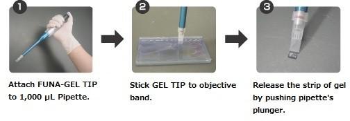 Excision Procedure of FUNA-GEL TIP