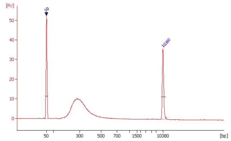 EpiNext Bisulfite-Seq  High Sensitivity Kit for Illumina