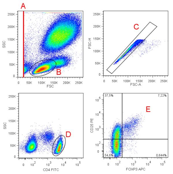 フローサイトメトリーによる制御性T細胞測定キット            TregFlowEx Kit