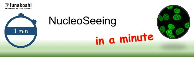 NucleoSeeing