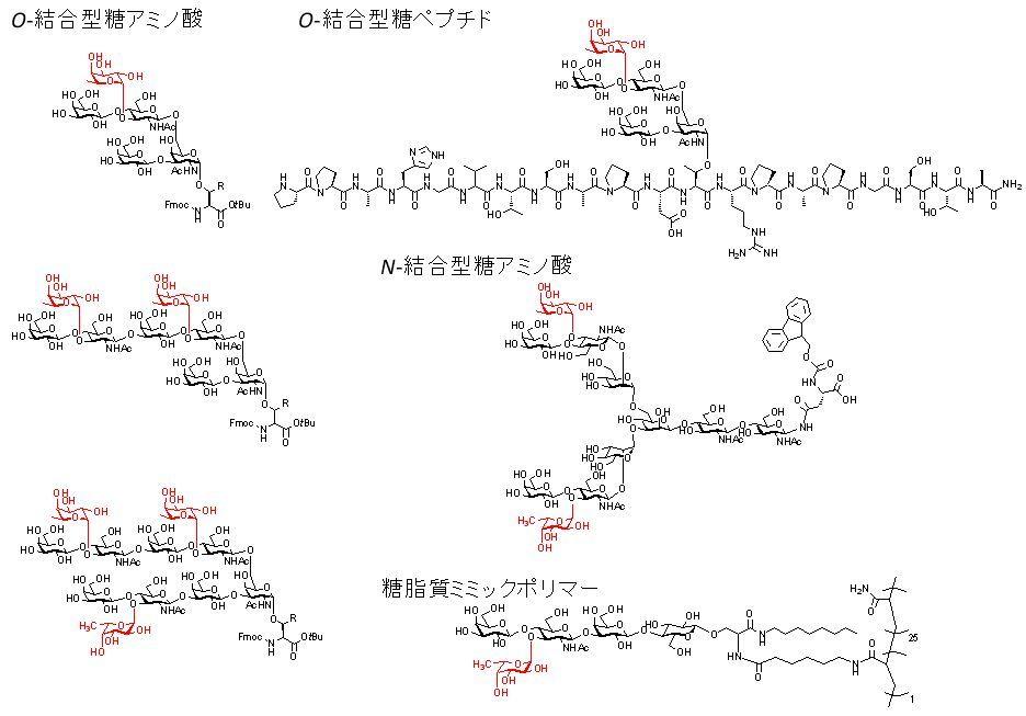 LewisX 抗原合成に有用なフコー...