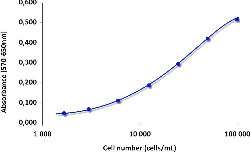 MTTの呈色反応を用いた細胞生存...
