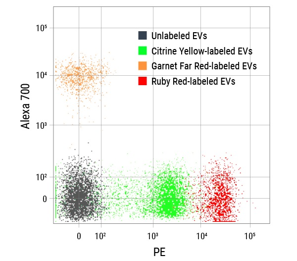 ExoFlow-ONE EV Labeling Kit for Flow Cytometry