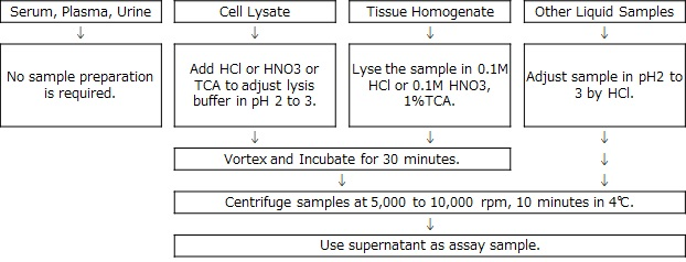 Sample preparation of Ferrozine method Iron Assay kit LS